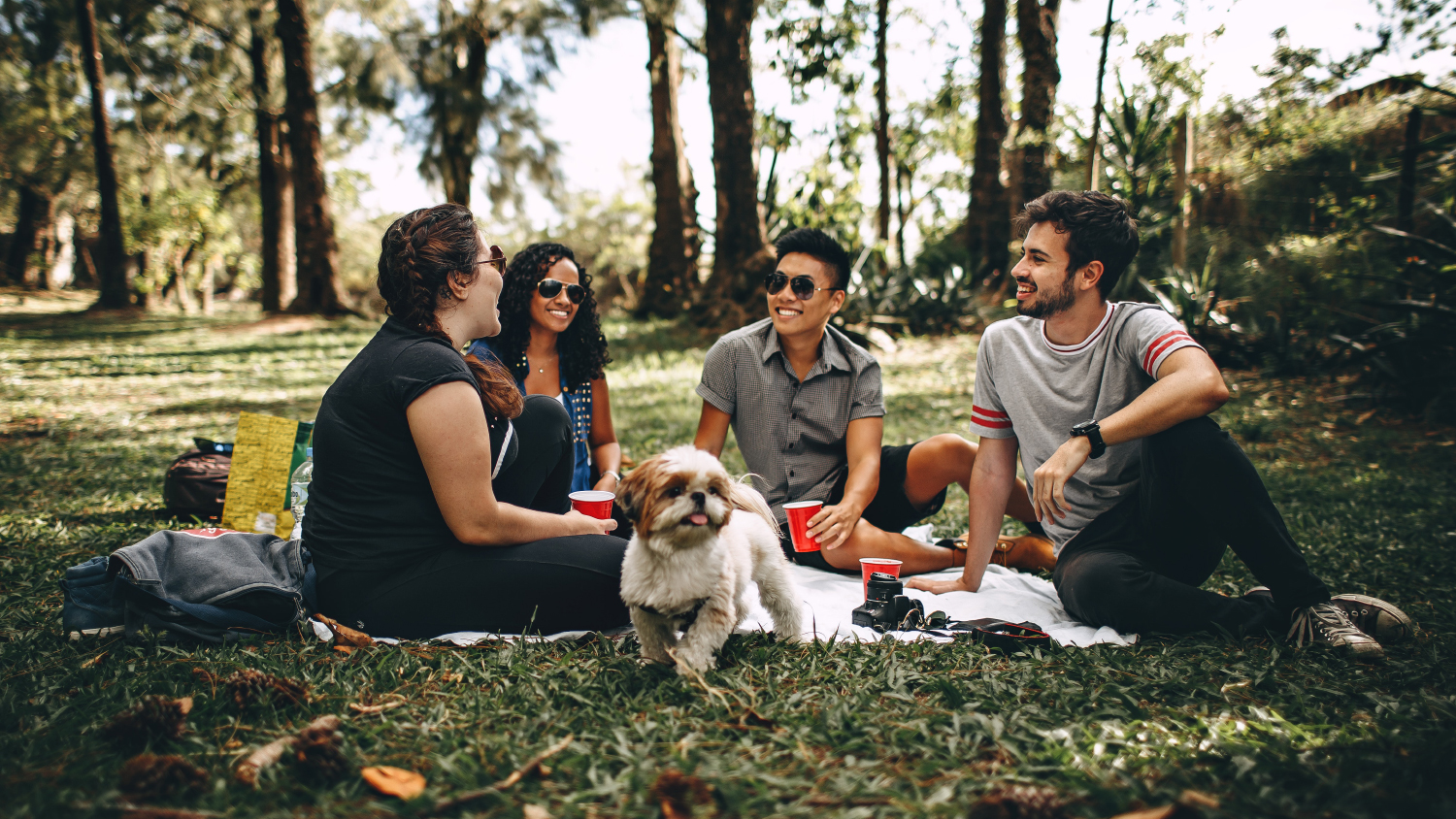 Friends enjoy a picnic in the woods.