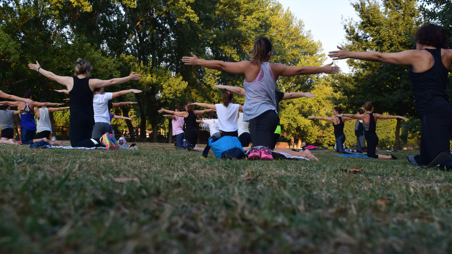 A group practices yoga outdoors.